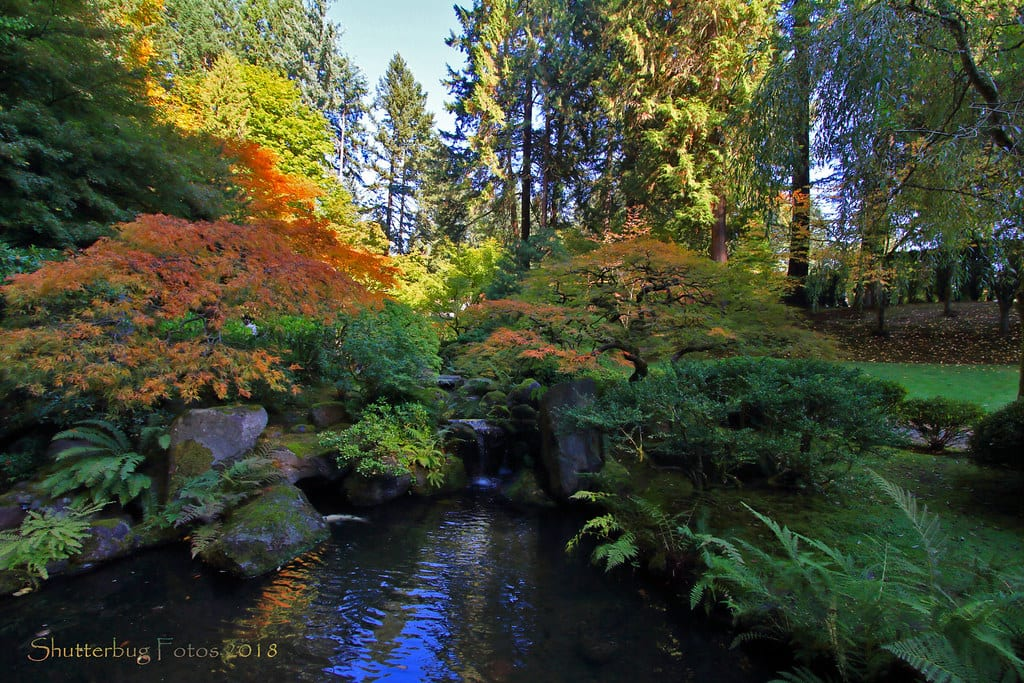 Portland Japanese Garden An Iconic Pdx Area Attraction